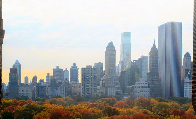 View Over Central Park New York City