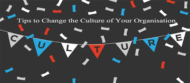 Culture of Organization