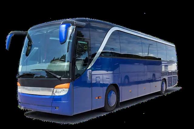 mp bus sewa