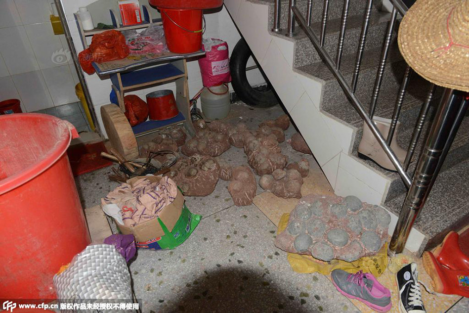 Residents Of The Home And Seized Dinosaur Fossil