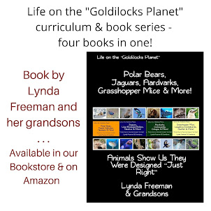 Life on the Goldilocks Planet