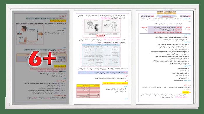 مذكرة المنعكس العضلي + مطبوعة التلميذ للسنة الثانية ثانوي