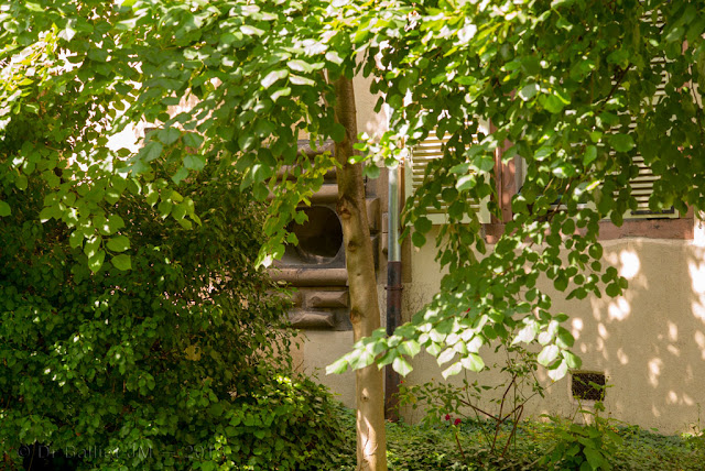 Canonnière colmarienne du 16e siècle (2018)… seule conservée et bien cachée !