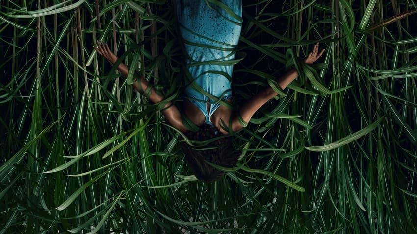 Обзор фильма «В высокой траве» - хтонический ужас напополам с фантастикой