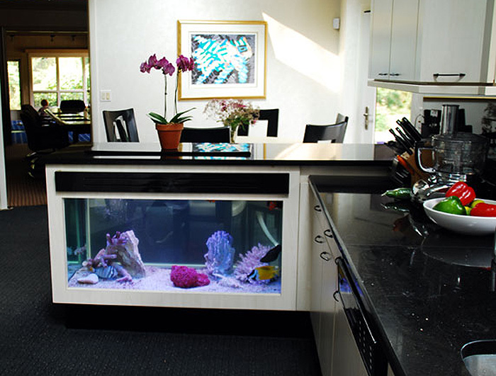 Kitchen Island Fish Tank Price