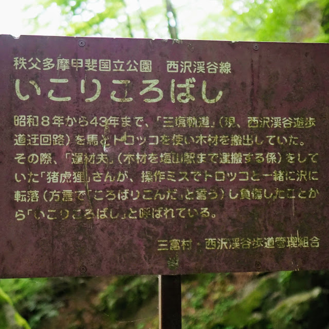 西沢渓谷 いこりころばし