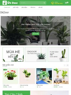 Website bán cây OkDoor cung cấp cây xanh văn phòng. - Ảnh 1
