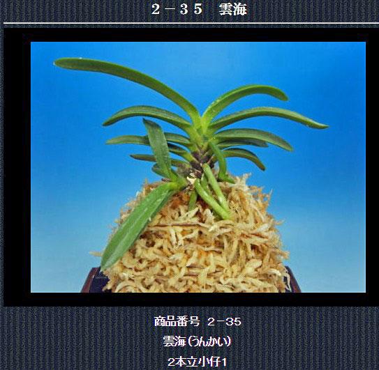 http://www.fuuran.jp/2-35.html