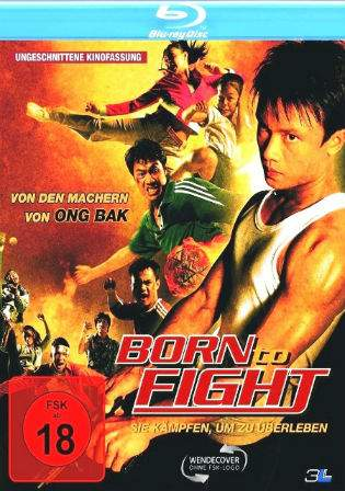 Born To Fight 2004 BluRay Hindi 700MB Dual Audio 720p Watch Online Full Movie Download bolly4u