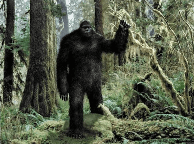Whether we call him Big Foot, Yeti, abominable snowman or Sasquatch, he is the most mythical creature of cryptozoology