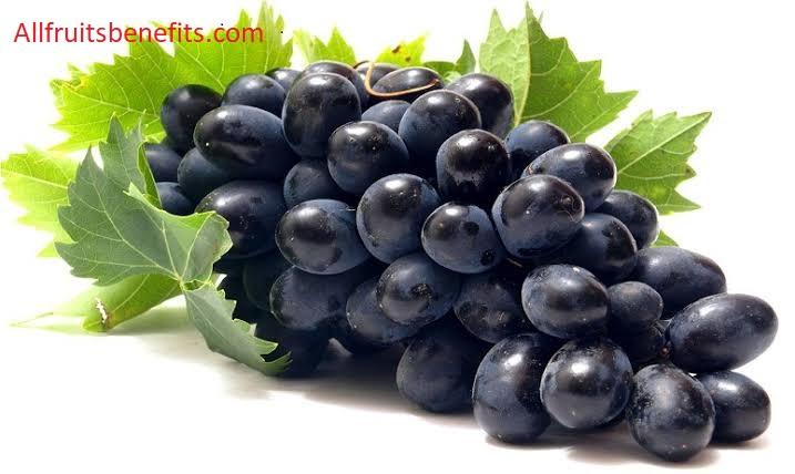 grapes benifit benifit of black grapes benifit of eating grapes