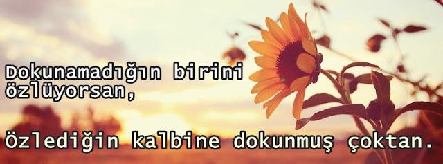 Türkçe Sevgi Sözleri Aşk