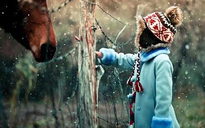 kış kar taneleri-at-çocuk-fotoğraf-duvar-1920x1200