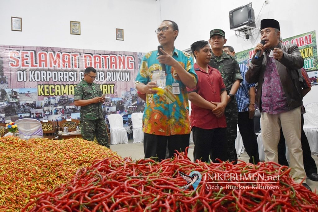 Keren! Pasar Lelang Cabai Dongkrak Keuntungan Petani di Kebumen