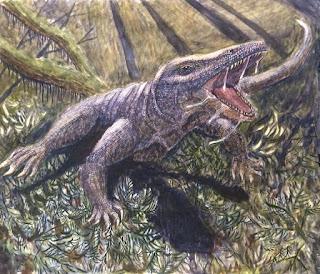 Surviving Megalania - Monster Lizards in Australia?