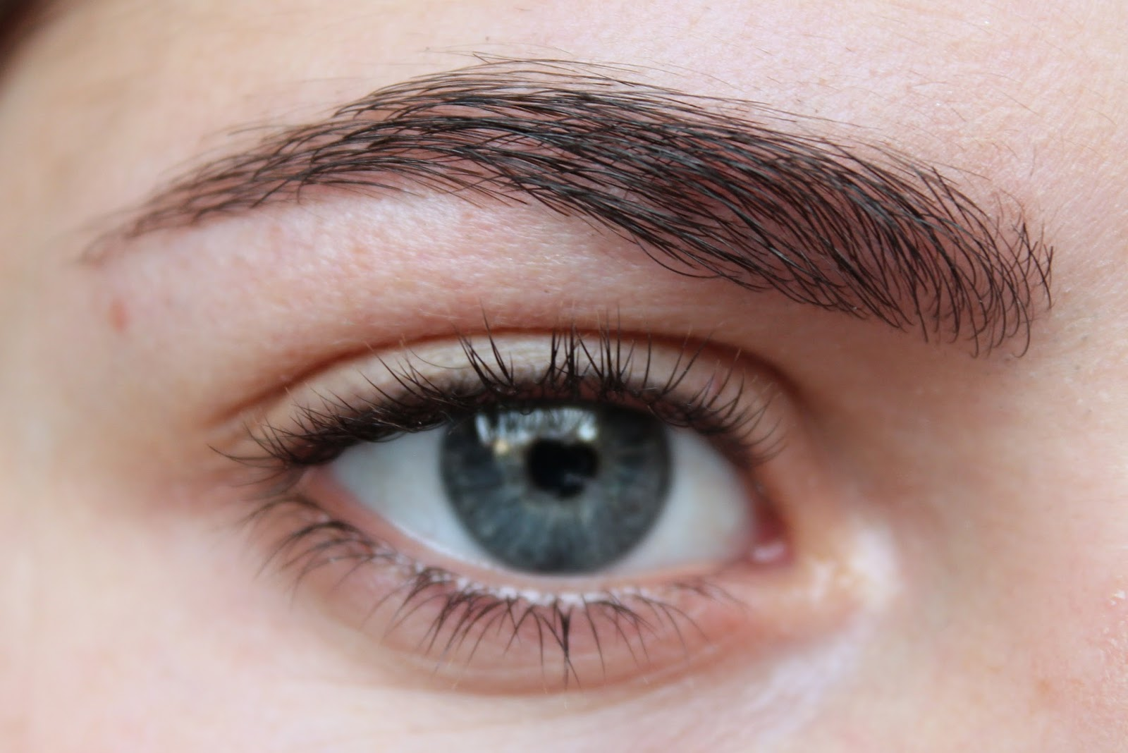 Why You Should Do Your Eyebrows And What To Use Love My Lucy