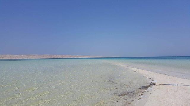 جزيرة ابومنقار بالصور