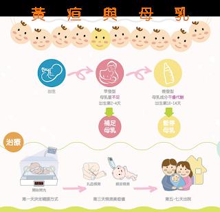 母乳與黃疸