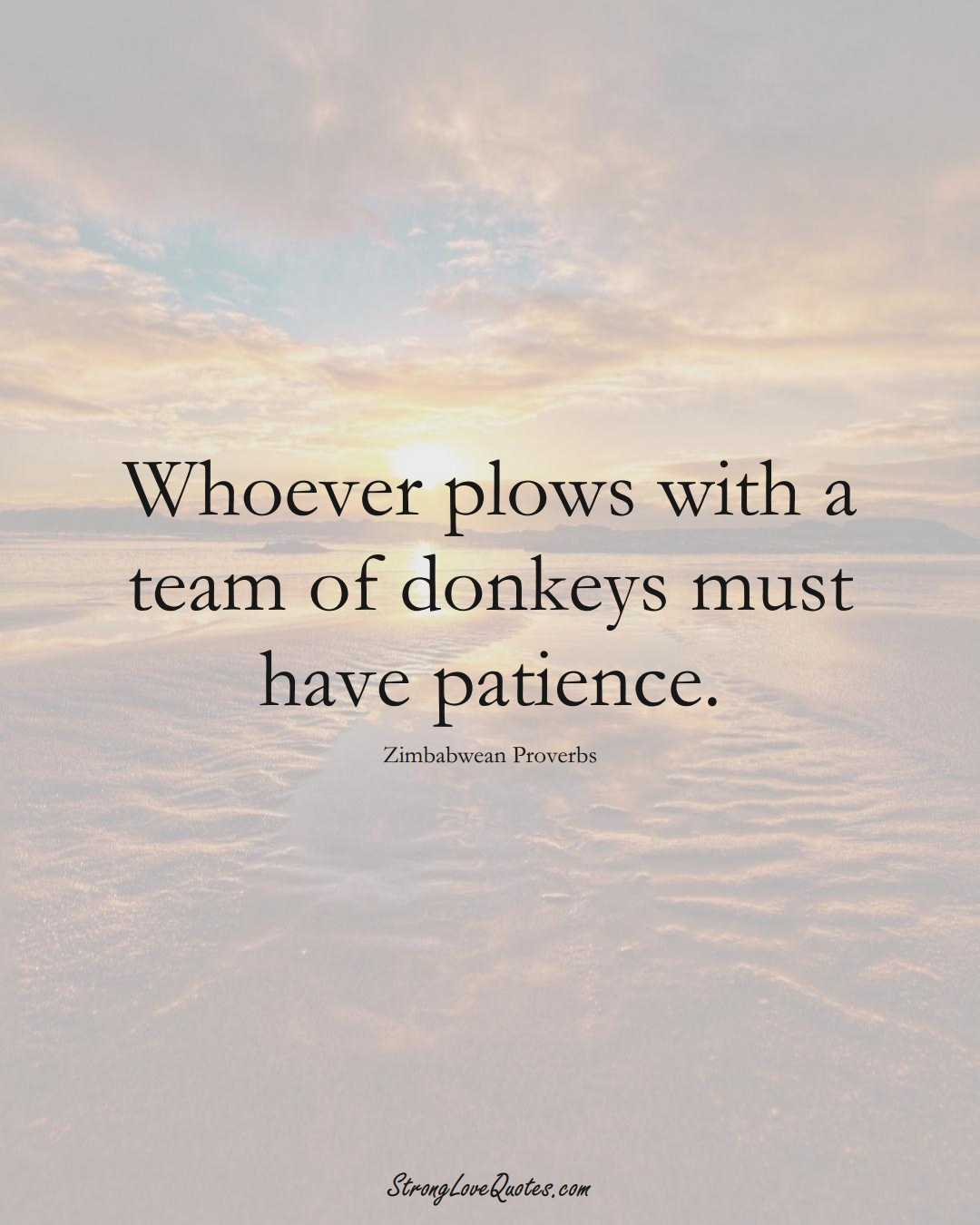 Whoever plows with a team of donkeys must have patience. (Zimbabwean Sayings);  #AfricanSayings