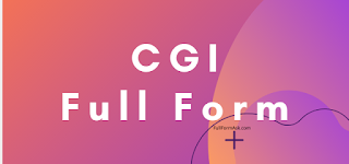CGI full meaning