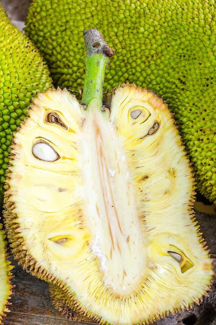 Поперечное сечение гигантского Джека-плода. .
