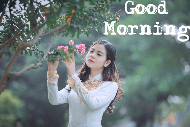 200+ Beautiful Good Morning Images Wallpaper Photo Pics HD Download