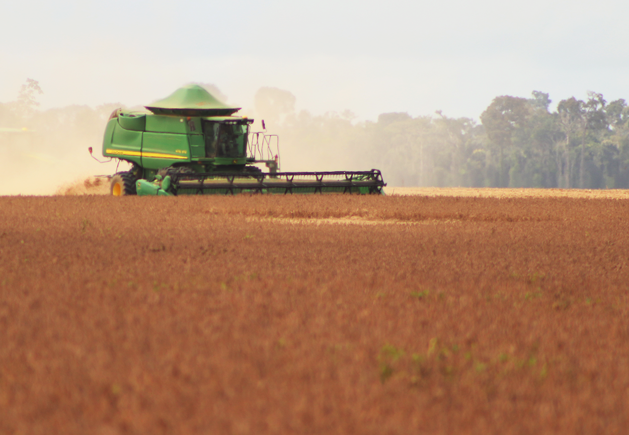 Colheita de polo Tapajós de soja atingiu 90% da área plantada neste ano