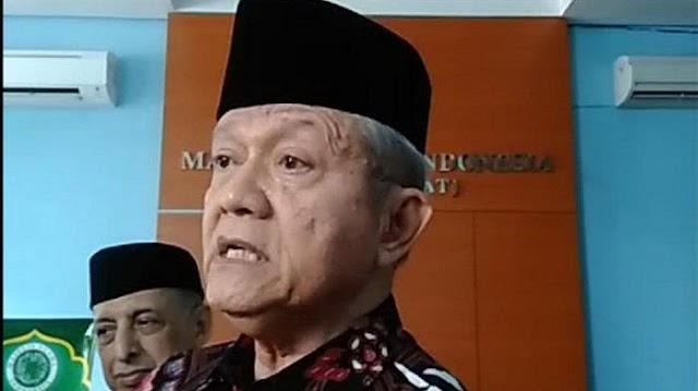 Rizieq Shihab Tersangka, Wakil Ketua Umum MUI Minta Polisi Jerat Pembuat Kerumunan Lainnya