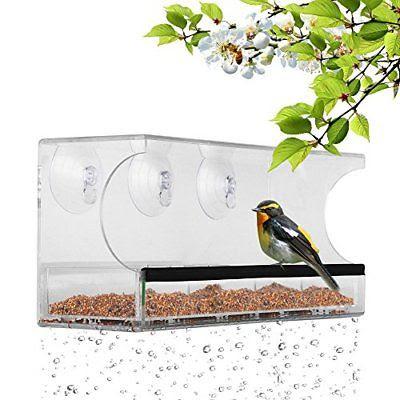 Nature's Hangout Window Bird Feeder w/ Suction Cups