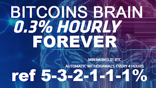Bitcoin FORUM: BITCOINS BRAIN investment review