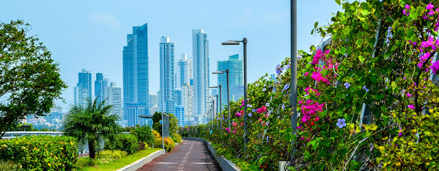 PANAMA CITY — Lawmakers in Panama have taken up an initiative that seeks to legalize marijuana for medicinal purposes.