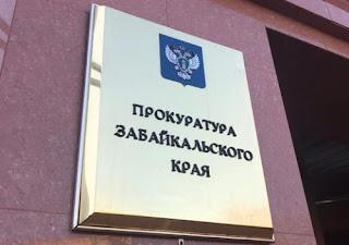 Новокручининский детский сад Ромашка