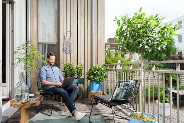 Laurel en el balcón: por qué es una buena opción.