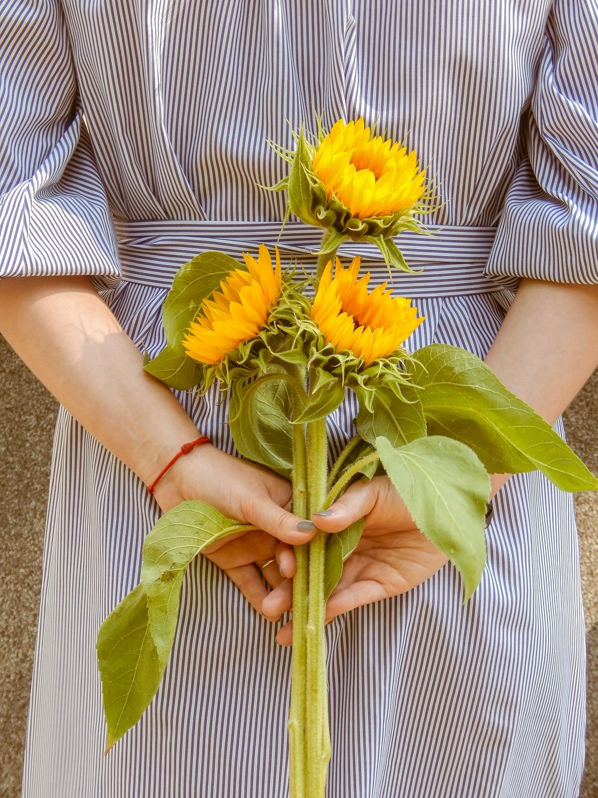 8 najpiękniejsze kwiaty do zdjęć letnia stylizacja jak nosić sukienki z czym nosić sukienki melodylaniella lifestyle blog łódź polska