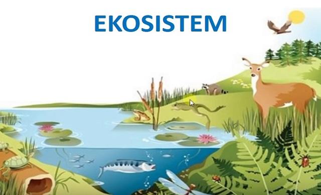 macam jenis ekosistem