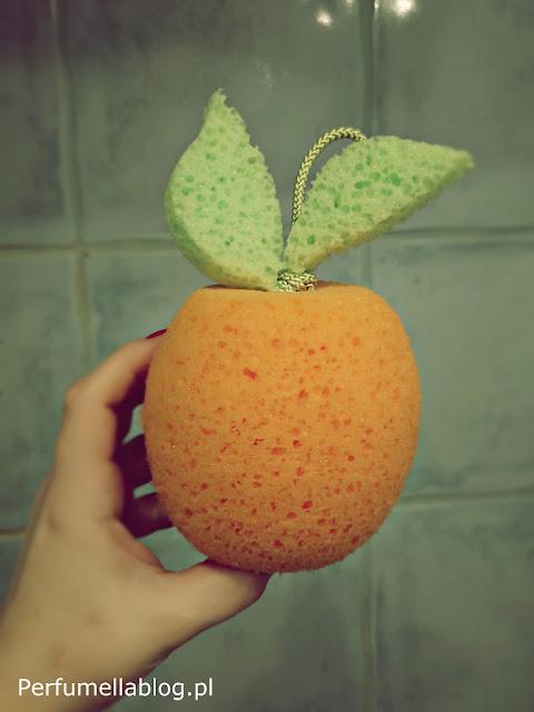 gąbka pomarańcza