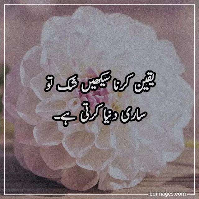 golden words in urdu one line