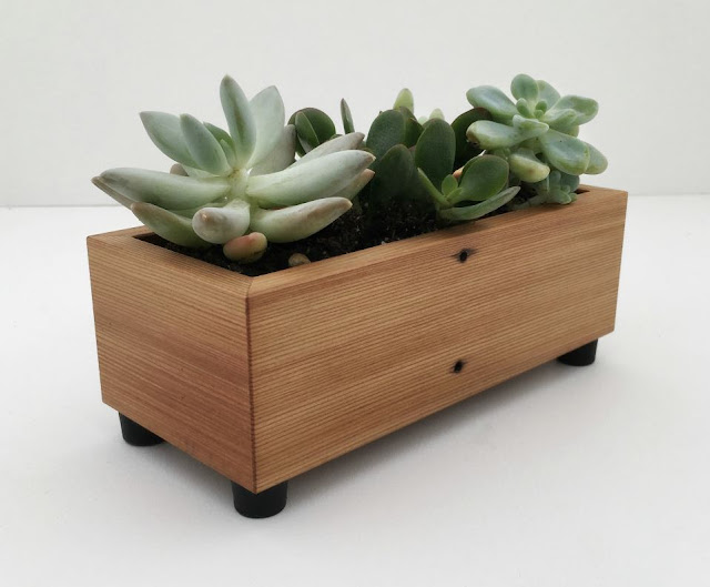 Succulent Planter Box in Reclaimed Wood
