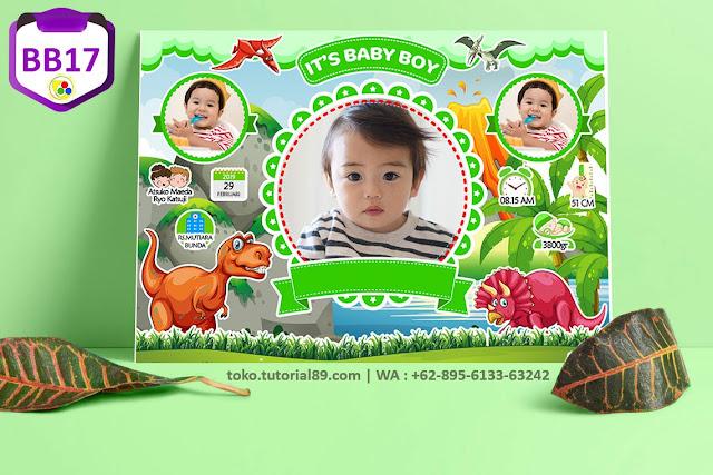 Biodata Bayi Costume Baby Boy Kode BB17 | Dinosaurus