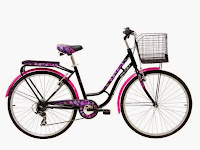 City Bike Wimcycle College 6 Speed 26 Inci