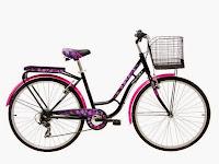 City Bike Wimcycle College 6 Speed 26 Inci