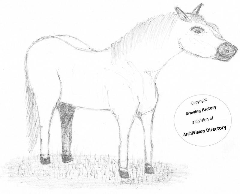 Sprookweerden Spreekwoorden Een Kar Voor Het Paard Spannen