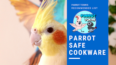 Parrot Safe Cookware | Parrot Care Tips | Inhaling Toxic Fumes from Pans & More!