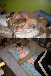 wtf man sleeping with horse sleeping with man, man sleeping with horse, horse sleeping with man, wtf, wtf funny pictures