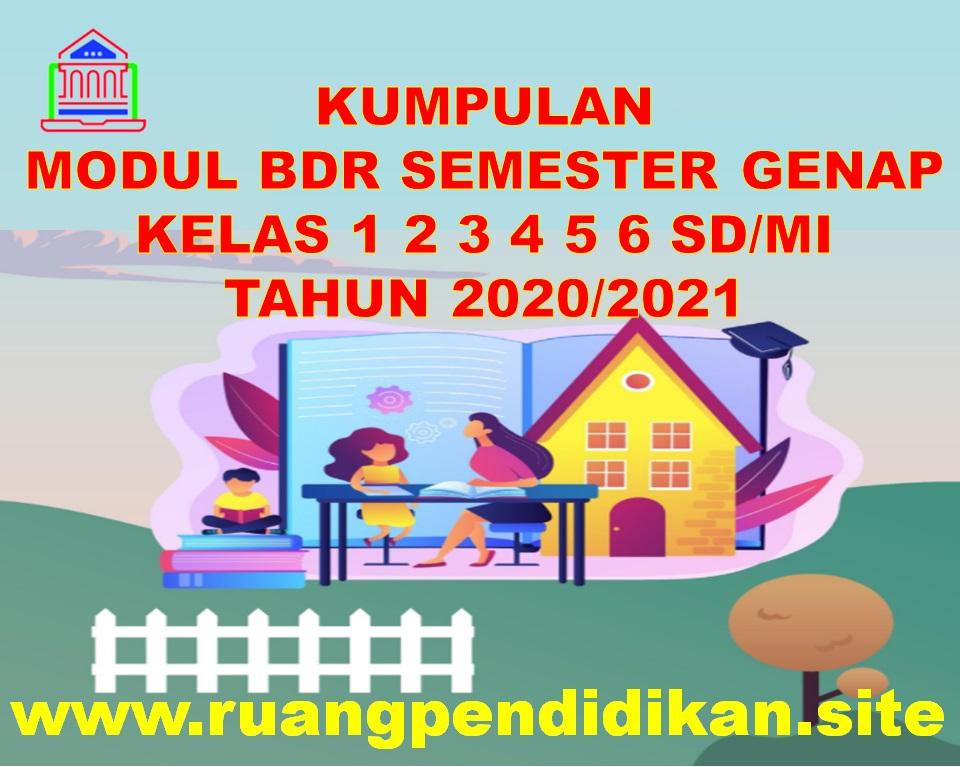 Modul BDR Semester 2 Kelas 1, 2, 3, 4, 5, 6 SD/MI