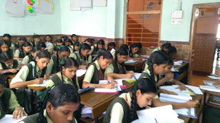 Aptitude Test for Career Guidance in Little Flower English School