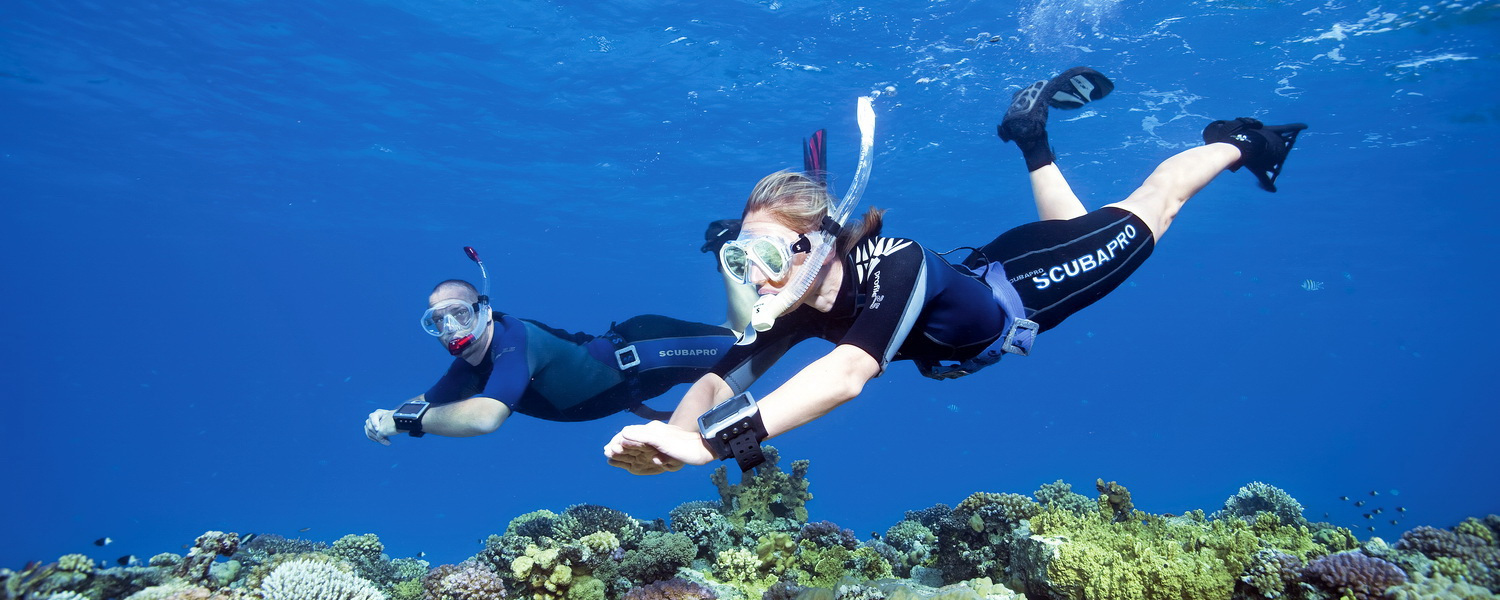 I Love Spearfishing: What Equipment Do I Need To Go Snorkeling
