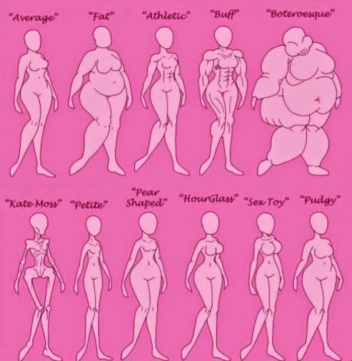 Argau: Female Body Type Chart
