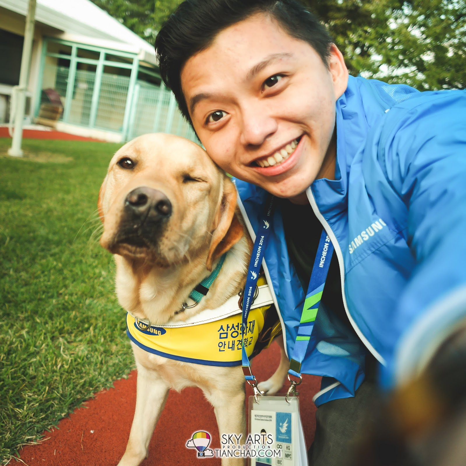 Guiding Eyes for the Blind - Guide Dogs for People with ...