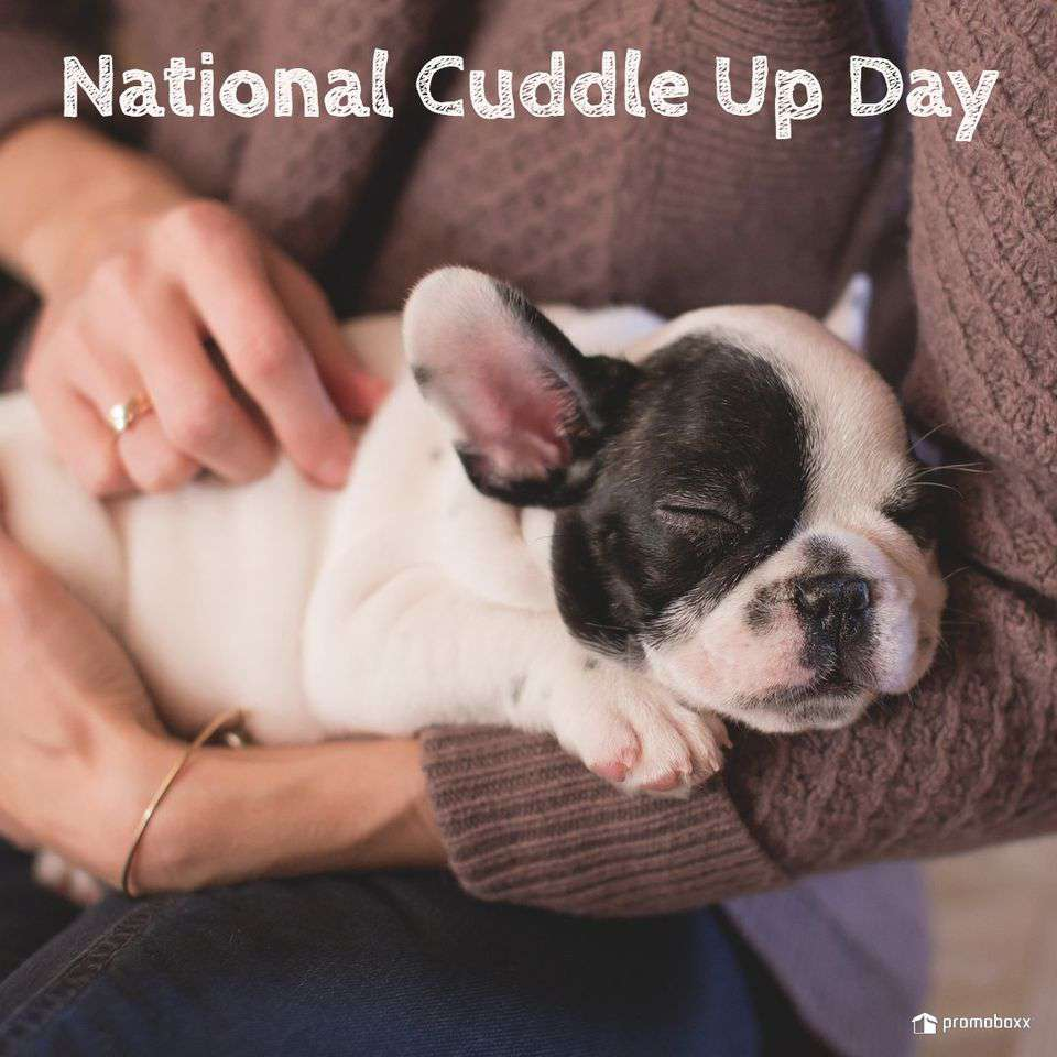 National Cuddle Up Day Wishes Photos